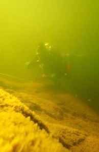 Diver_transect