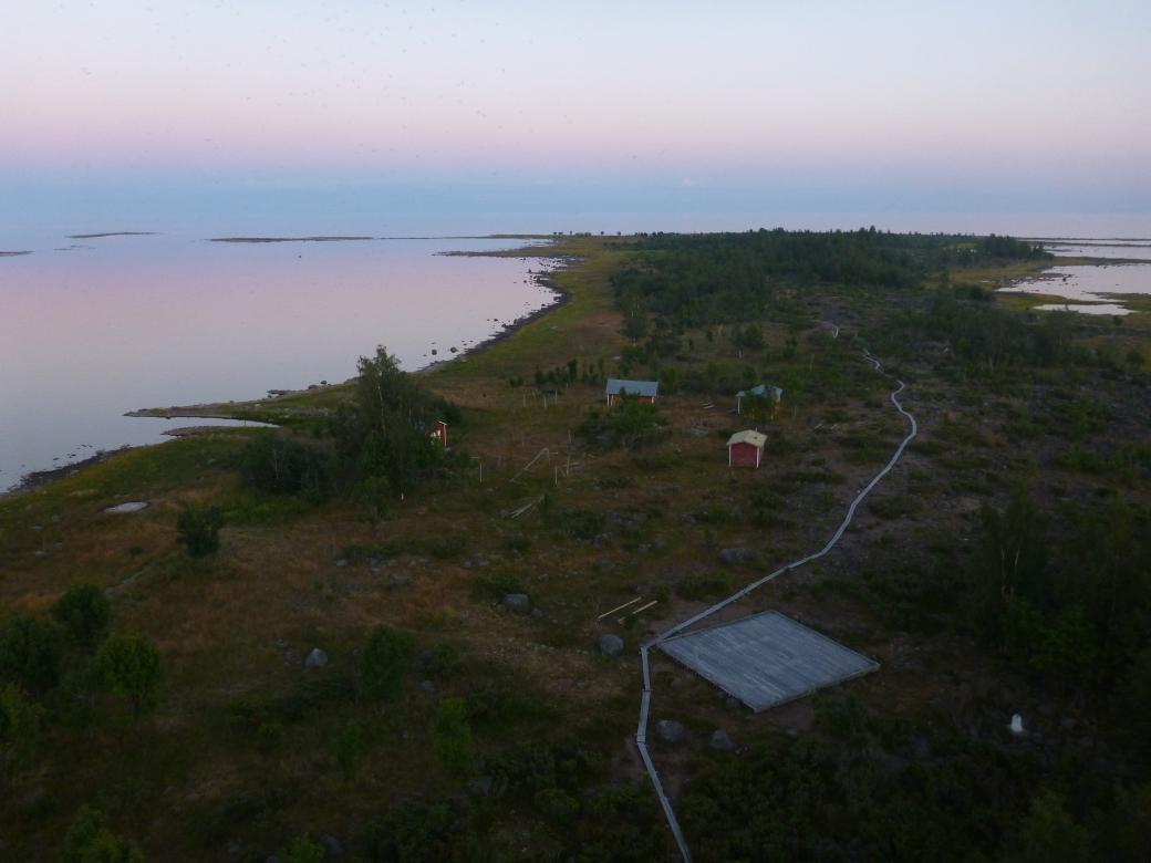 Selkä-Sarvi_Lari_Järvinen_Metsähallitus2012 (1)