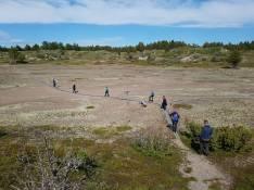PEM_Selkä-sarvi_28-06-2018_METSÄHALLITUS_Essi_Keskinen (2)