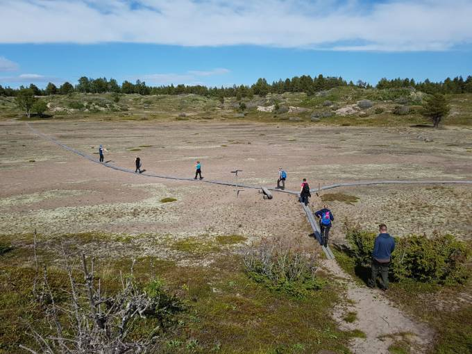 A sand valley with duckboards going across, 7 people walking on them.
