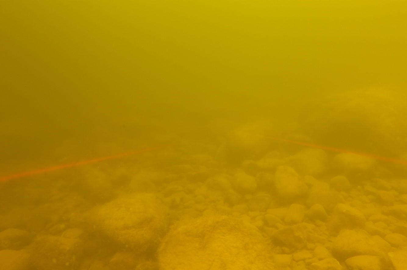 Rocky bottom and very turbid water.