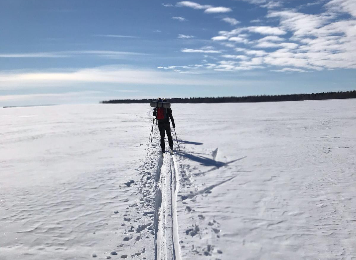 2 persons skiing on snowy sea ice.