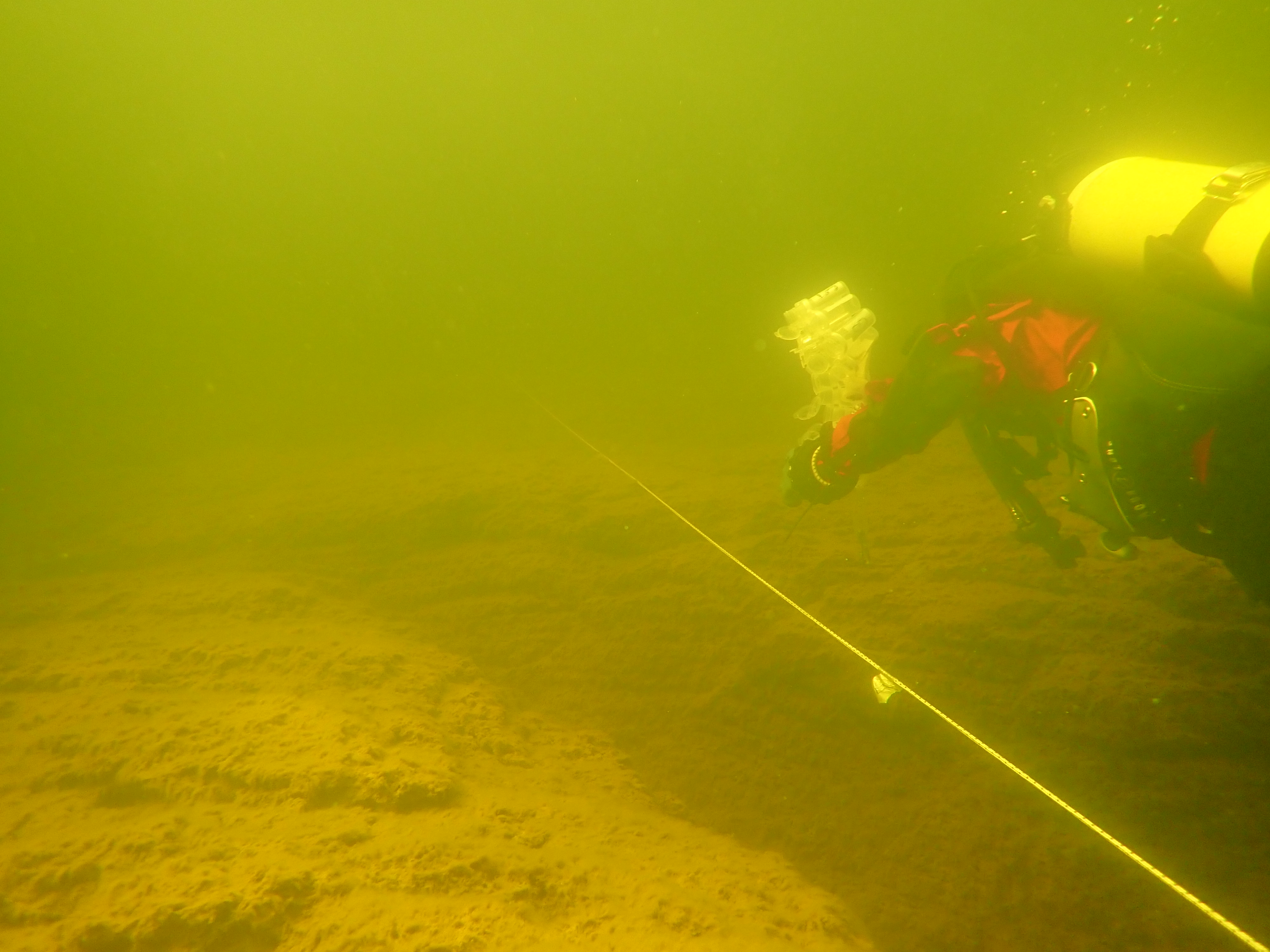 A diver close to the bottom, next to a transect line.