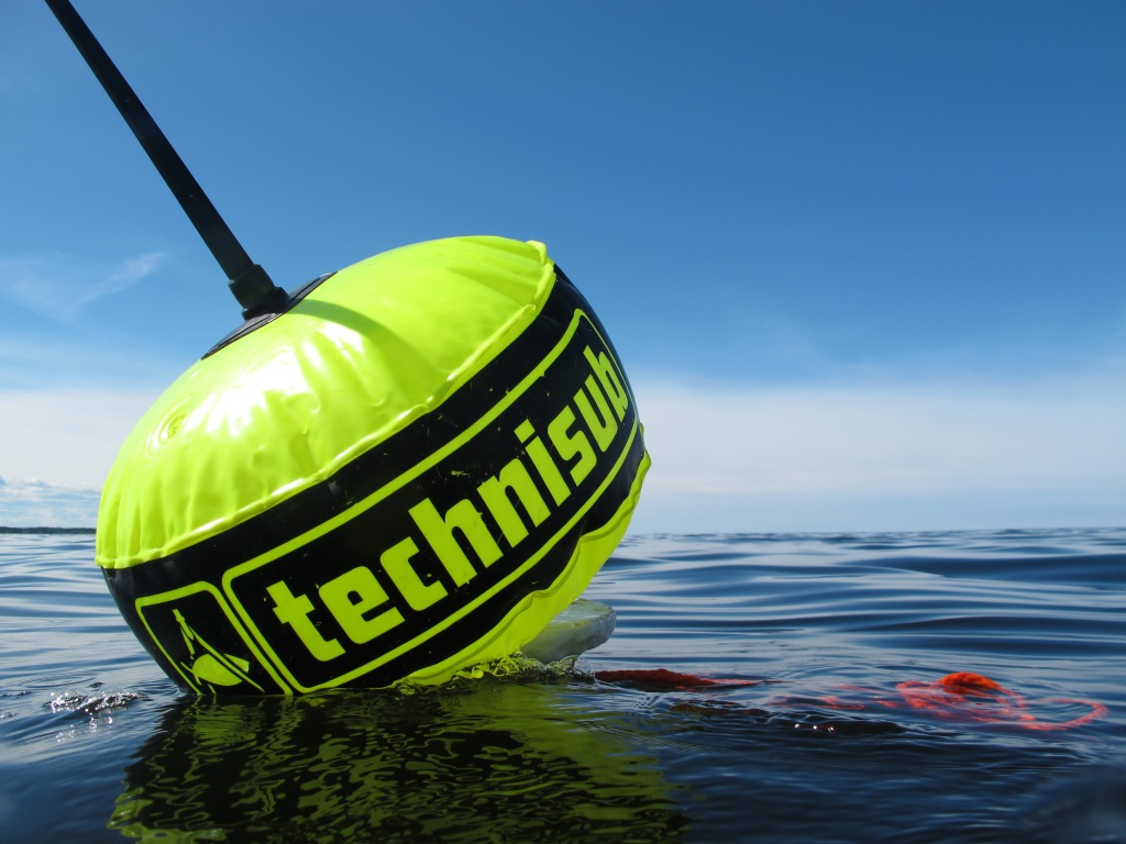 A buoy on water, marking the dive transect.