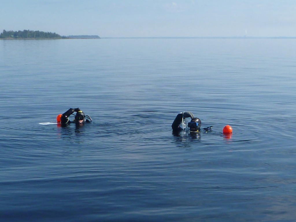 "Two divers in water, showing ""going down"" hand signal. A hand on top of the head."