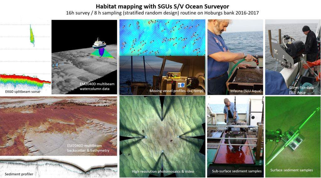10 pictures of habitat mapping with SGU's S/V Ocean Surveyor. Splitbeam sonar, multibeam watercolumn data, moving vessel profiles, infauna study, gilnet fish data, multibeam backscatter and bathymetry, high resolution photomosaics and video, sub-surface sediment samples, surface sediment samples.