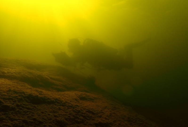 A diver in murky water close to the bottom, taking notes.