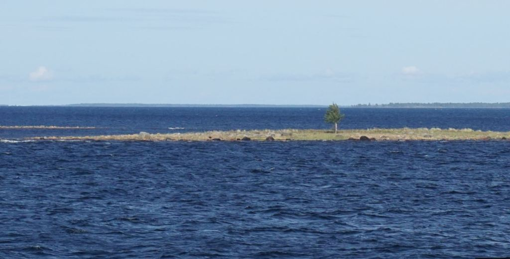 Small island with single tree in the middle of the sea.
