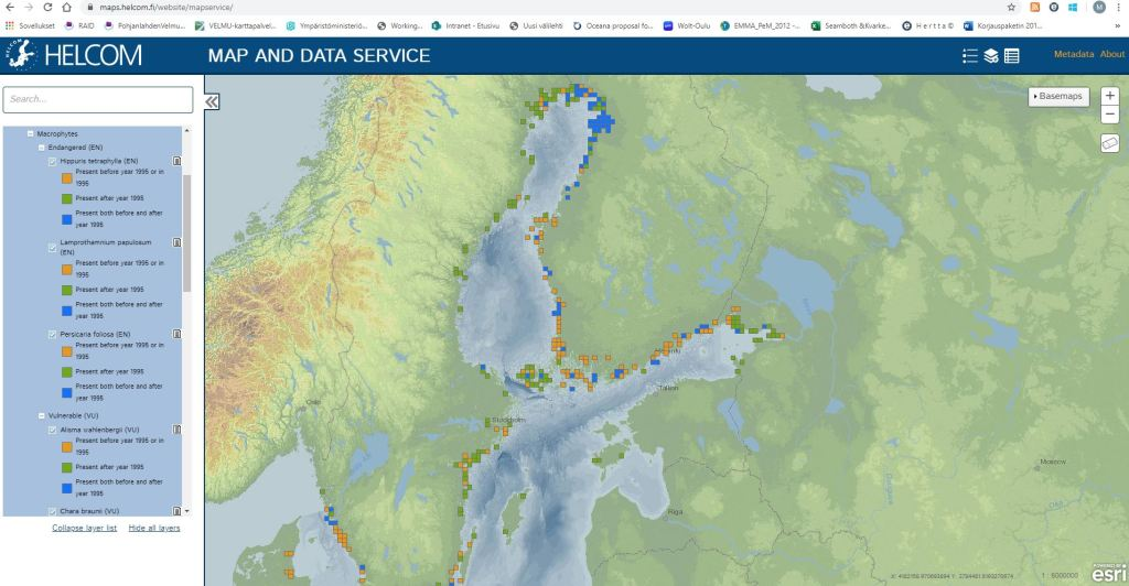 A map of Baltic Sea where most green and blue dots are found in the Bothnian Bay, orange dots in south Finland and Sweden.